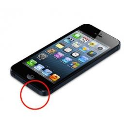Sostituzione Vivavoce e Flex Antenna iPhone 5