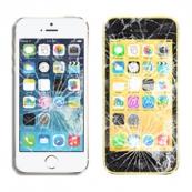 Sostituzione schermo iphone 5c / 5s