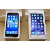 iPhone 6 e 6 Plus usato